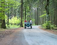 Fahrt durch den Wald